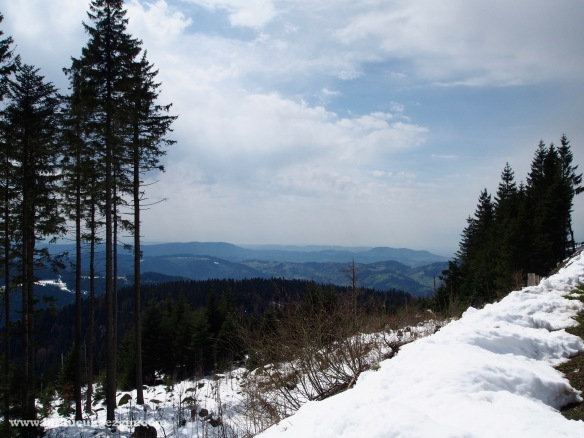 Black Forest High Altitude Panaromic Road